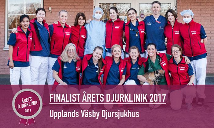 Upplands Väsbys Djursjukhus är finalist  i Årets Djurklinik 2017
